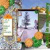 pj_2010_808